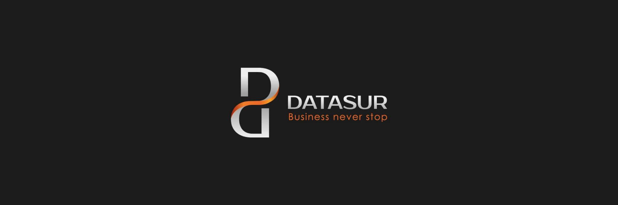 Logo Datasur horizontal 01
